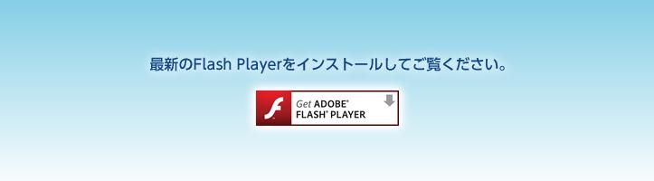 最新のFlash Playerをインストールしてくご覧ください。